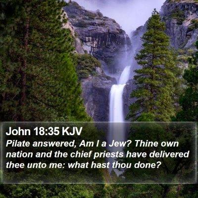 John 18:35 KJV Bible Verse Image