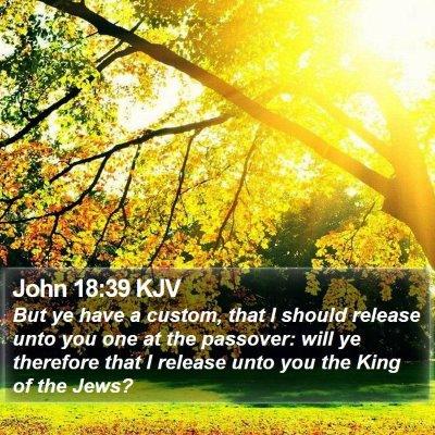 John 18:39 KJV Bible Verse Image