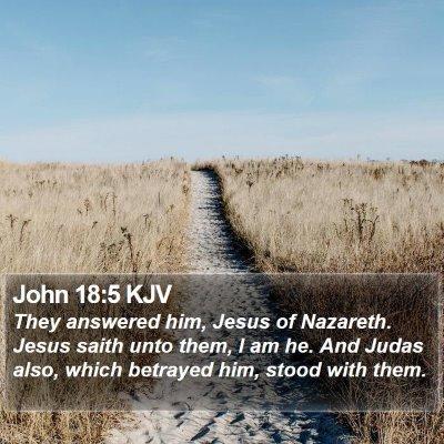 John 18:5 KJV Bible Verse Image