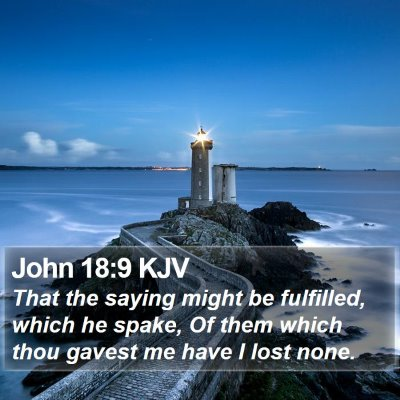 John 18:9 KJV Bible Verse Image