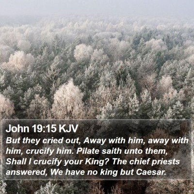 John 19:15 KJV Bible Verse Image