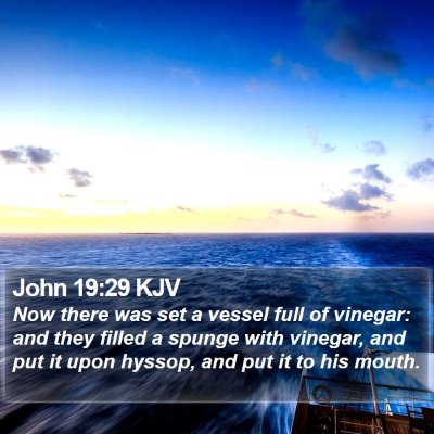 John 19:29 KJV Bible Verse Image