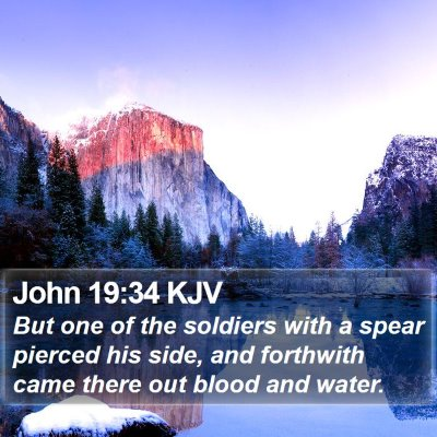 John 19:34 KJV Bible Verse Image
