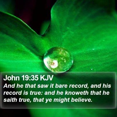 John 19:35 KJV Bible Verse Image