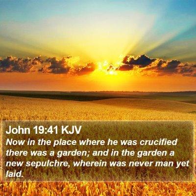 John 19:41 KJV Bible Verse Image