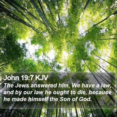 John 19:7 KJV Bible Verse Image