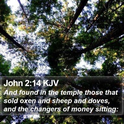 John 2:14 KJV Bible Verse Image