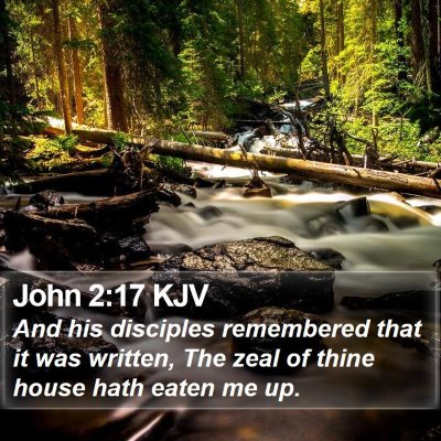 John 2:17 KJV Bible Verse Image