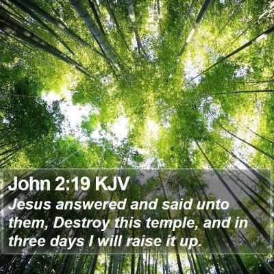John 2:19 KJV Bible Verse Image