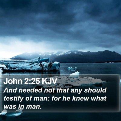 John 2:25 KJV Bible Verse Image