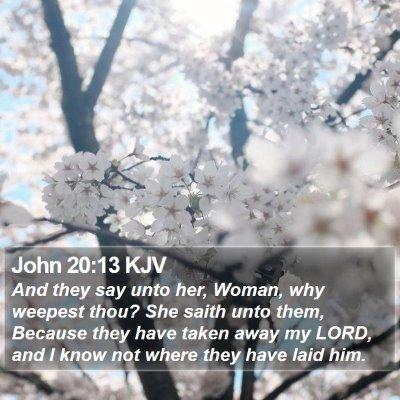 John 20:13 KJV Bible Verse Image