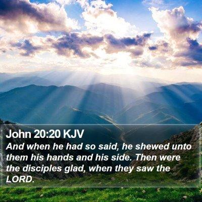 John 20:20 KJV Bible Verse Image