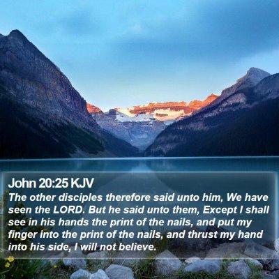 John 20:25 KJV Bible Verse Image