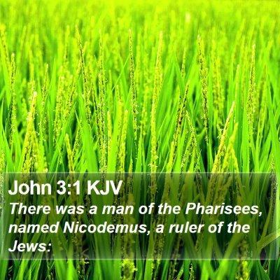 John 3:1 KJV Bible Verse Image