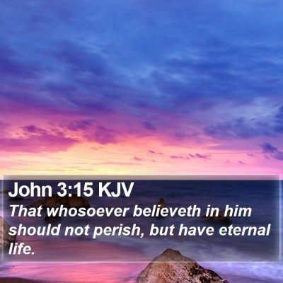 John 3:15 KJV Bible Verse Image