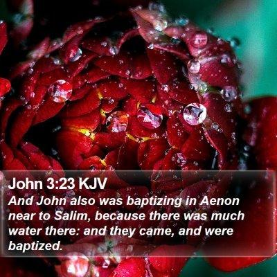 John 3:23 KJV Bible Verse Image
