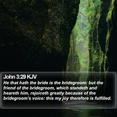 John 3:29 KJV Bible Verse Image