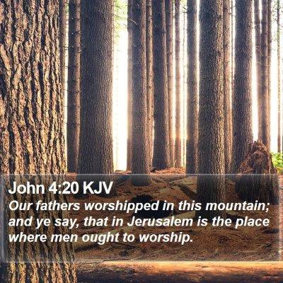 John 4:20 KJV Bible Verse Image
