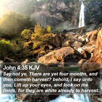 John 4:35 KJV Bible Verse Image