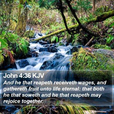 John 4:36 KJV Bible Verse Image