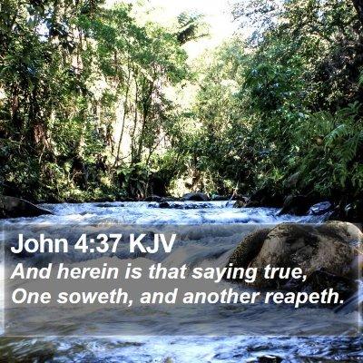 John 4:37 KJV Bible Verse Image