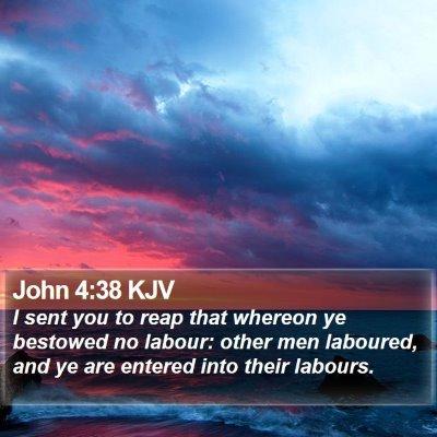 John 4:38 KJV Bible Verse Image