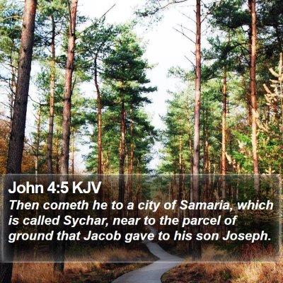 John 4:5 KJV Bible Verse Image