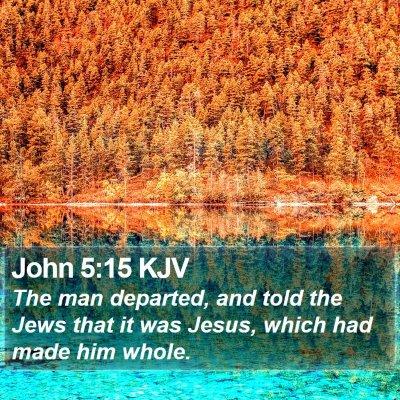 John 5:15 KJV Bible Verse Image