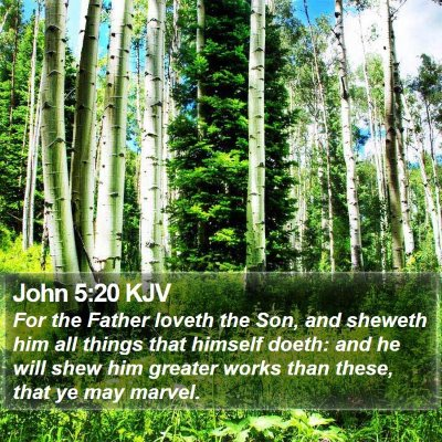 John 5:20 KJV Bible Verse Image