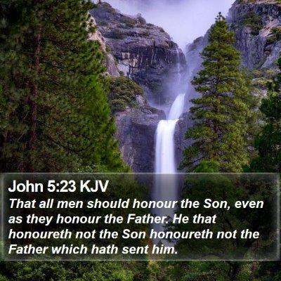 John 5:23 KJV Bible Verse Image