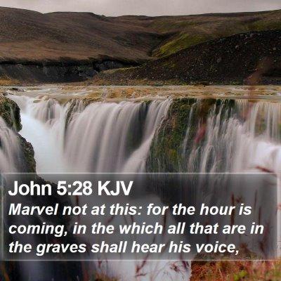 John 5:28 KJV Bible Verse Image