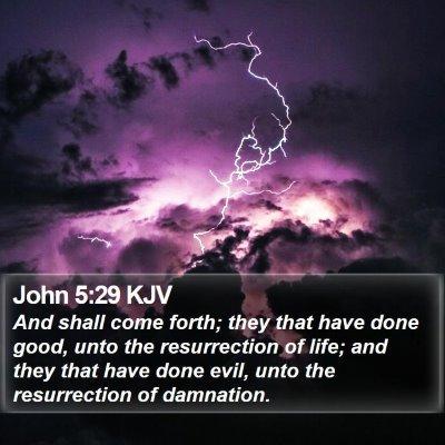 John 5:29 KJV Bible Verse Image