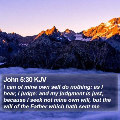 John 5:30 KJV Bible Verse Image