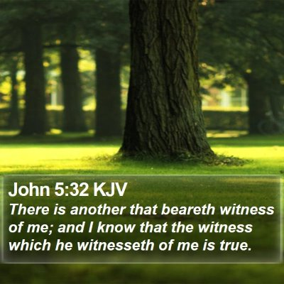 John 5:32 KJV Bible Verse Image