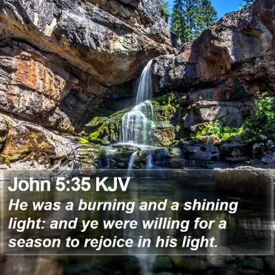 John 5:35 KJV Bible Verse Image