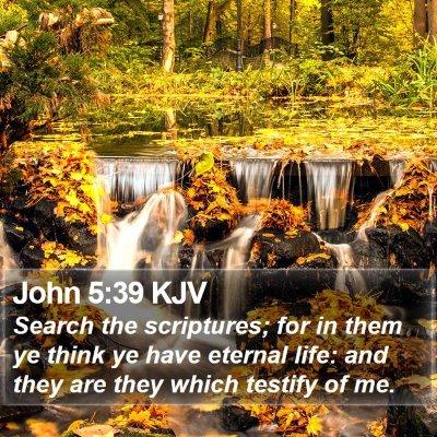 John 5:39 KJV Bible Verse Image