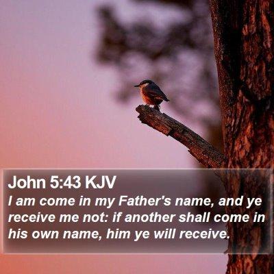 John 5:43 KJV Bible Verse Image