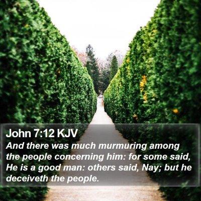 John 7:12 KJV Bible Verse Image