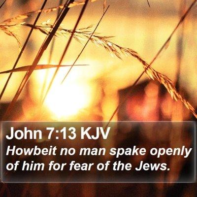 John 7:13 KJV Bible Verse Image