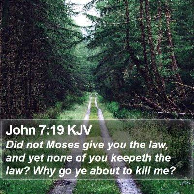 John 7:19 KJV Bible Verse Image