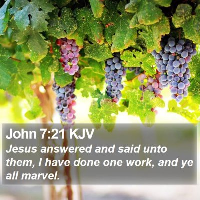 John 7:21 KJV Bible Verse Image