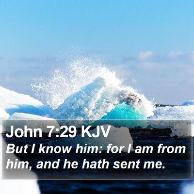 John 7:29 KJV Bible Verse Image