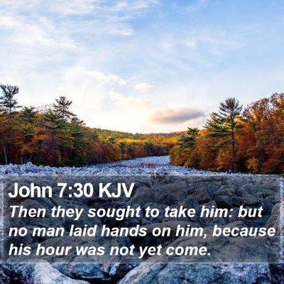John 7:30 KJV Bible Verse Image