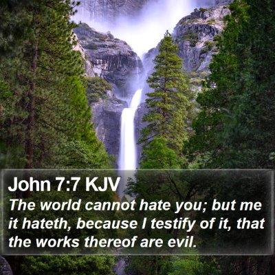 John 7:7 KJV Bible Verse Image