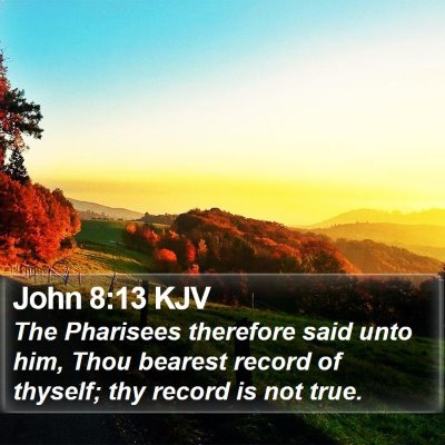 John 8:13 KJV Bible Verse Image
