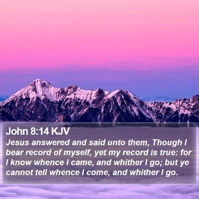 John 8:14 KJV Bible Verse Image