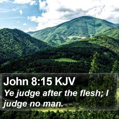 John 8:15 KJV Bible Verse Image