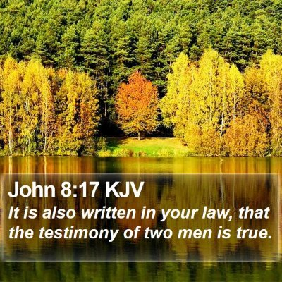 John 8:17 KJV Bible Verse Image