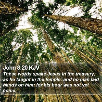 John 8:20 KJV Bible Verse Image