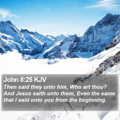 John 8:25 KJV Bible Verse Image